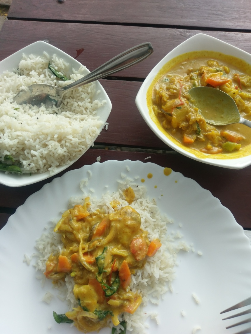 Coconut curry in Cochin