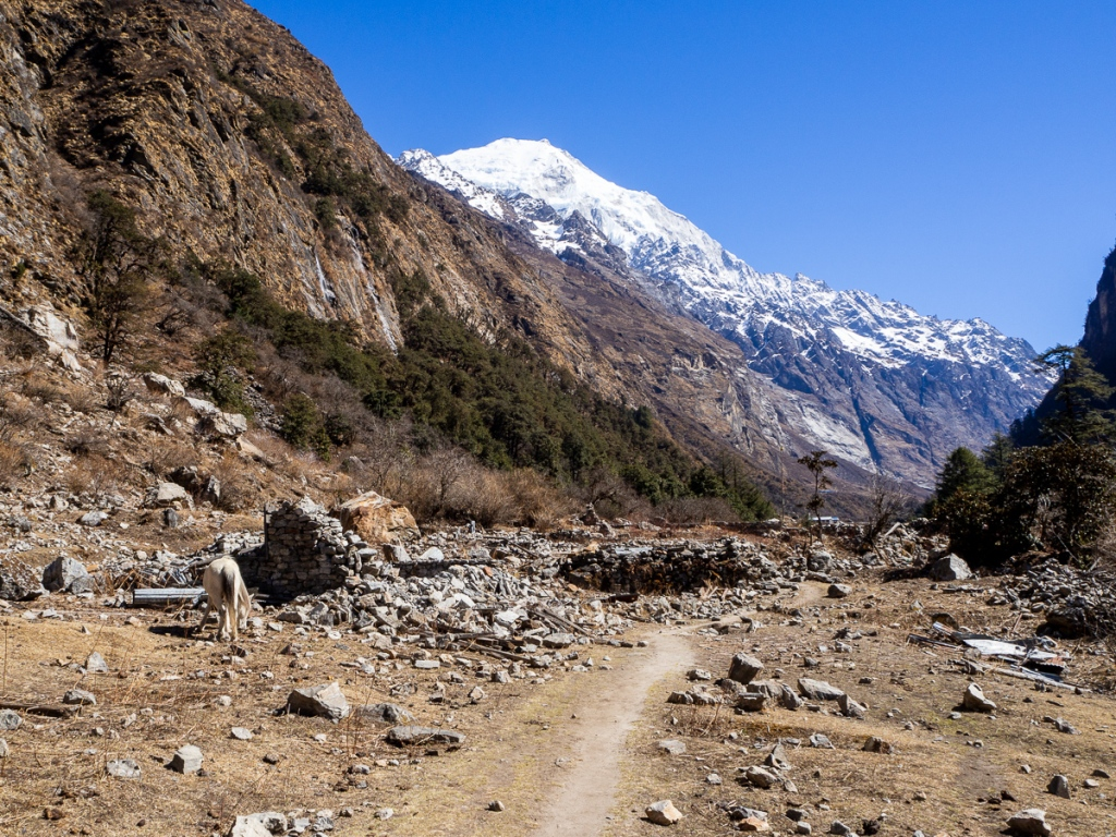 Earthquake damage in Langtang Valley
